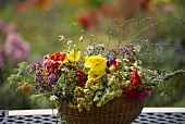 Basket of colourful summer flowers, Cosmos, poppies etc.