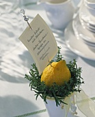 Small pot of lemon and herbs as menu holder