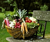 Basket of fresh garden vegetables on a bench