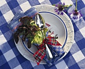 Soup plate with spoon, lettuce leaf and napkin as decoration