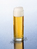 Kölsch beer with head of foam in a glass