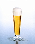 A glass of Pils with head of foam