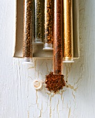 Various spice mixtures in test-tubes