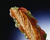 BLT sandwich (bacon, lettuce and tomato)