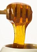 Honey running from a honey dipper (close-up)