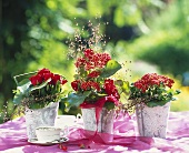 Three arrangements of red roses, red achillea, quaking grass