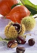 Chestnuts and Hokkaido squashes