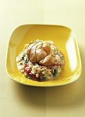 Coda di rospo al risotto (Monkfish on tomato risotto)