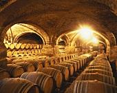 Barrique-Fässer im Weinkeller, Viña San Pedro, Curico, Chile