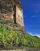 Sundial in a vineyard, Mosel-Saar-Ruwer, Germany