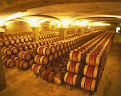 Barrique barrels in wine cellar of Château Margaux, Bordeaux