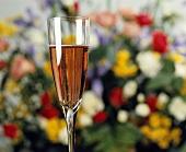 Ein Glas Rosé-Champagner