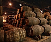 Port barrels, Graham's Lodge, Vila Nova de Gaia, Portugal