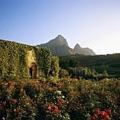 L'Ormarins Wine Estate, Franschhoek, S. Africa