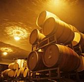 Wine cellar, Grasso Silvio Estate, La Morra, Piedmont, Italy