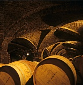Weinkeller des Gutes Santa Rita, Valle del Maipo, Chile