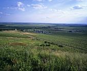 The Disznokö Wine Estate, Tokaj, Hungary