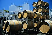 New wooden barrels (Houghton Wines, Swan Valley, Australia)