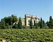 Château des Fines Roches, Châteauneuf-du-Pape, Rhône valley