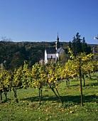 Eberbach Monastery in Eltville, Rheingau, Germany