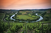 Horseshoe bend in Saar near Kanzem, Mosel-Saar-Ruwer, Germany