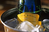 Cremant de Bourgogne in champagne cooler