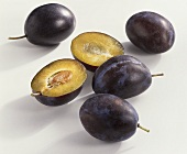 Plums (Prunus domestica), variety 'Cacaks Fruchtbare'