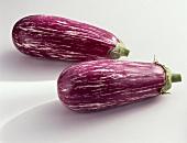 Auberginen (Solanum melongena), gestreift