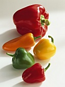 Assorted Bell Peppers with different Colors