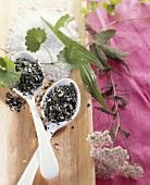 Herb salt on spoons