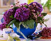 Hortensie und Kohlblätter in blauem Blumentopf