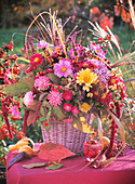 Chrysanthemums, Amaranthus, Cotoneaster and ox-eye daisies