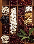 Typesetter's case with assorted dried beans