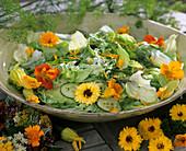 Salat mit Dill, Kapuzinerkresse und Ringelblumen
