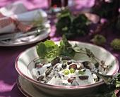 Grape yoghurt