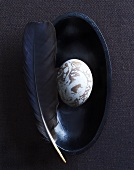 Marbled goose egg with goose feather in a black bowl
