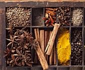 Zutaten für scharfes Currypulver für Geflügel im Setzkasten