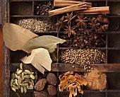 Ingredients for garam masala in type case