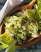 Roman salad with parmesan, fennel and pine nuts