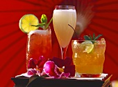 Drinks: Mai Tai, Singapore Sling, Virgin Mangostino