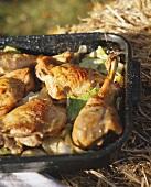 Turkey leg with white cabbage on baking tin on straw