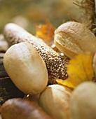 Light roll & dark sesame baguette with autumn leaves