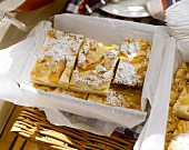 Quark apricot slices with icing sugar on picnic basket