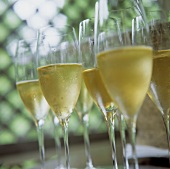 Glasses Of Champagne at Buffet