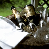 Two champagne bottles & several empty glasses in stone cooler