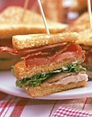 Section of a Club Sandwich