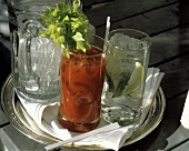 Bloody Mary and Gin and Tonic; Pitcher of Ice