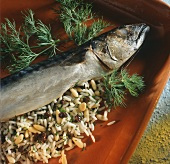 Stuffed mackerel with rice currants and pine nuts