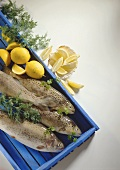 Fresh lake trout, brook trout; rainbow trout with herbs