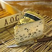 A piece of Bleu d'Auvergne cheese